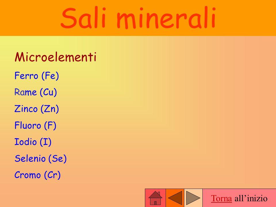 Sali minerali Microelementi Ferro (Fe) Rame (Cu) Zinco (Zn) Fluoro (F)