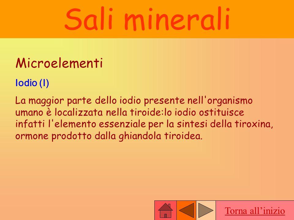 Sali minerali Microelementi Iodio (I)