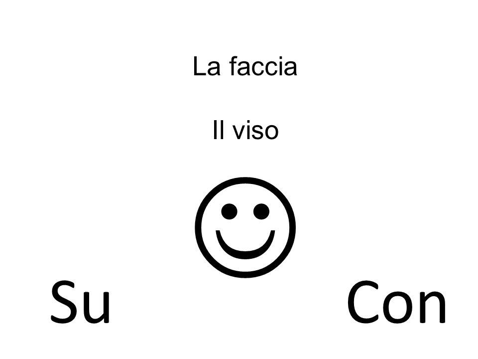 La faccia Il viso  Su Con