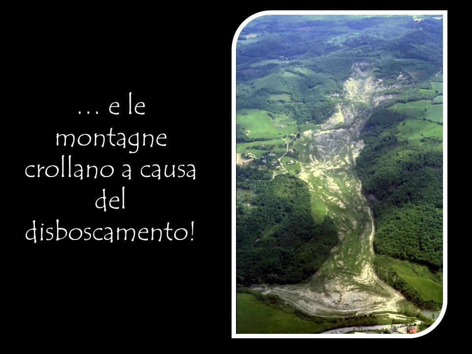 … e le montagne crollano a causa del disboscamento!