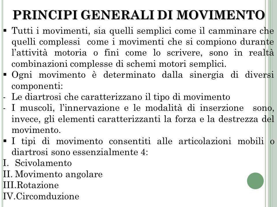 PRINCIPI GENERALI DI MOVIMENTO