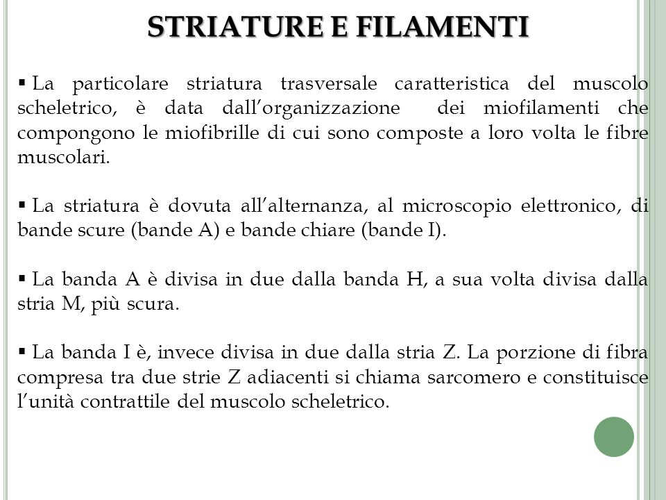 STRIATURE E FILAMENTI