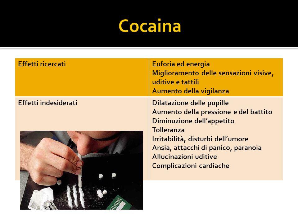 Cocaina Effetti ricercati Euforia ed energia