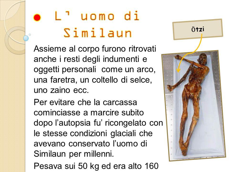 L' uomo di Similaun. Ӧtzi.