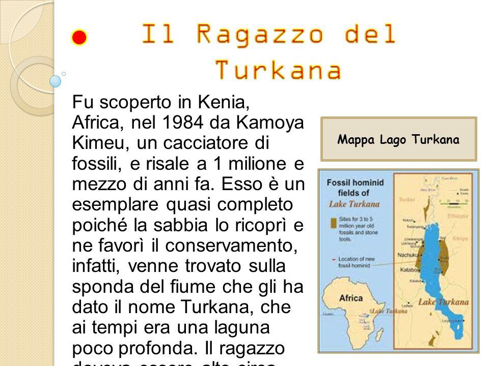 Il Ragazzo del Turkana.
