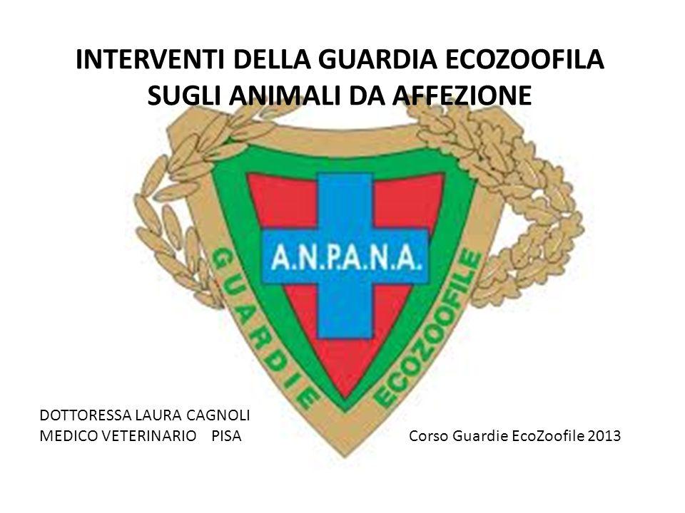INTERVENTI DELLA GUARDIA ECOZOOFILA SUGLI ANIMALI DA AFFEZIONE