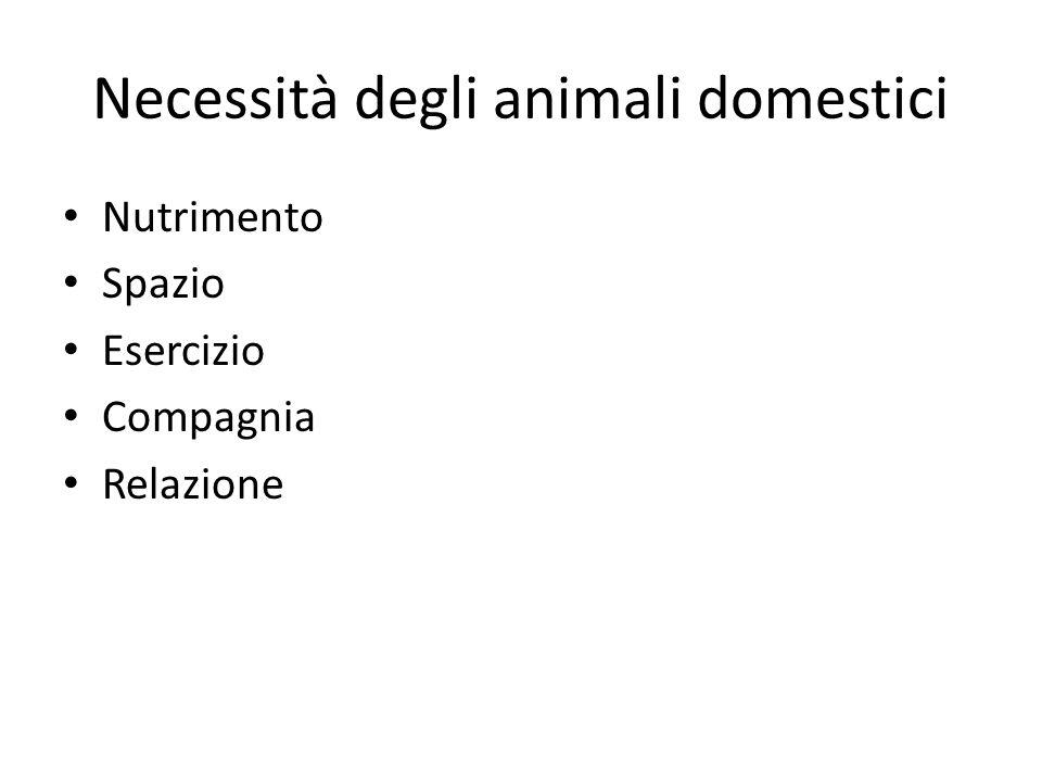 Necessità degli animali domestici