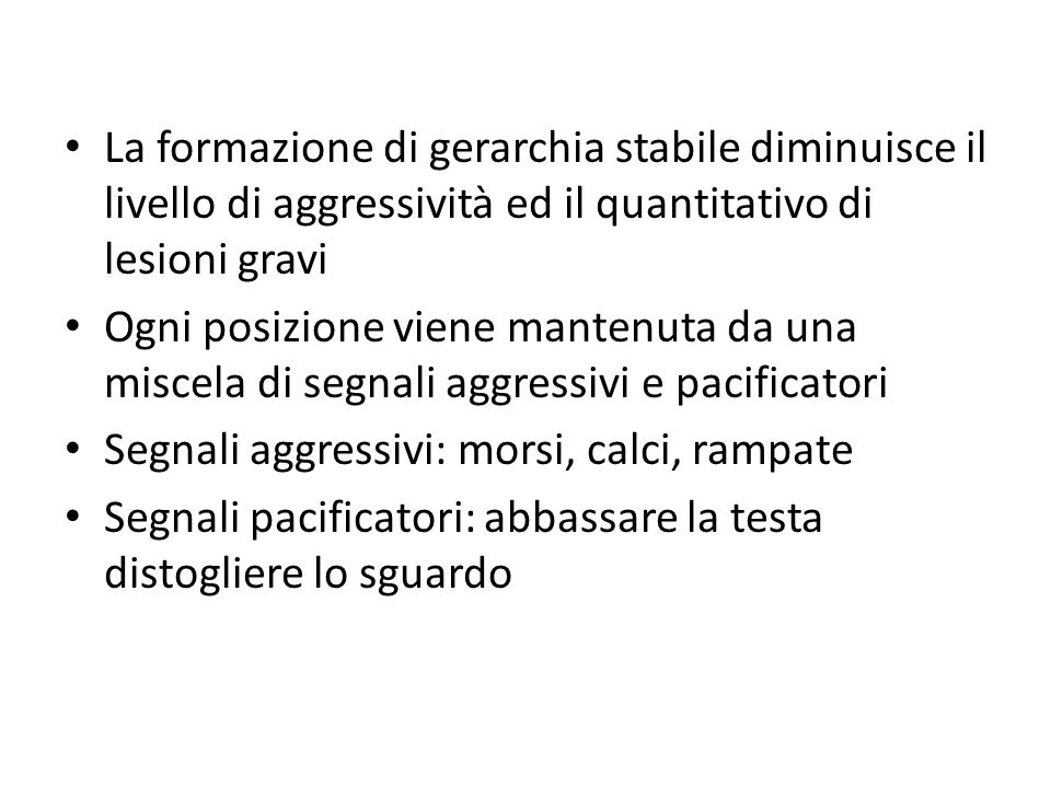 La formazione di gerarchia stabile diminuisce il livello di aggressività ed il quantitativo di lesioni gravi