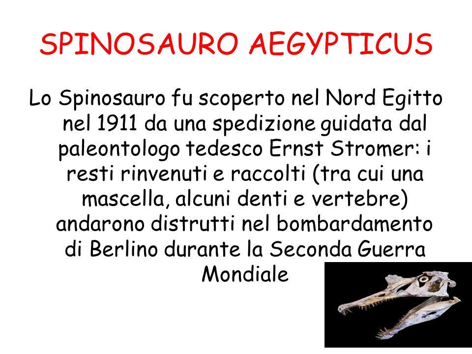 SPINOSAURO AEGYPTICUS