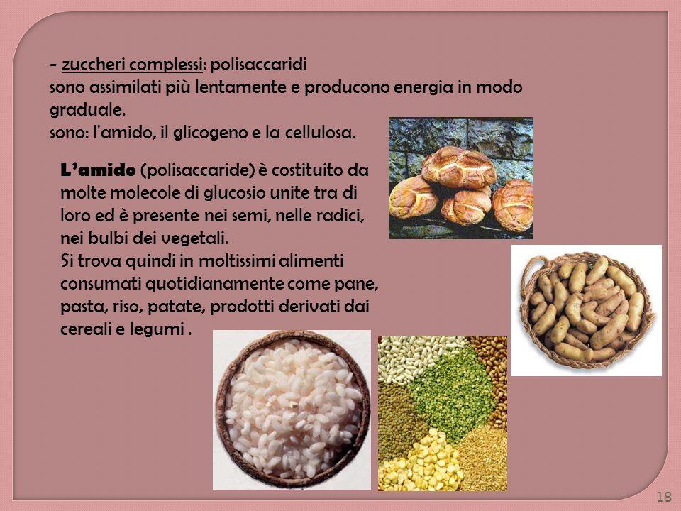 - zuccheri complessi: polisaccaridi
