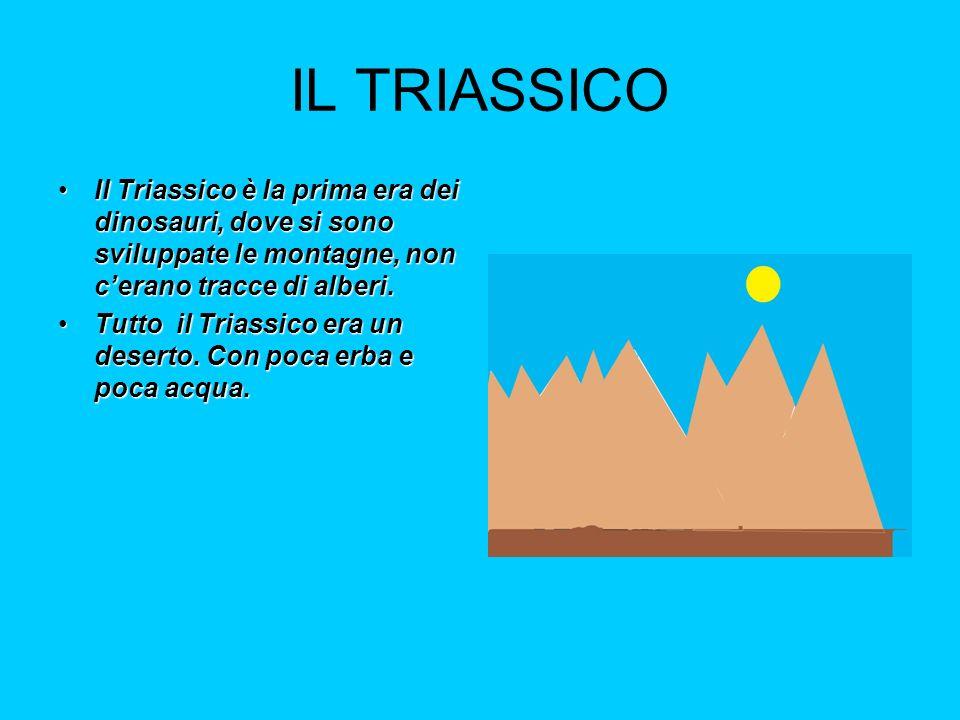 IL TRIASSICO Il Triassico è la prima era dei dinosauri, dove si sono sviluppate le montagne, non c'erano tracce di alberi.