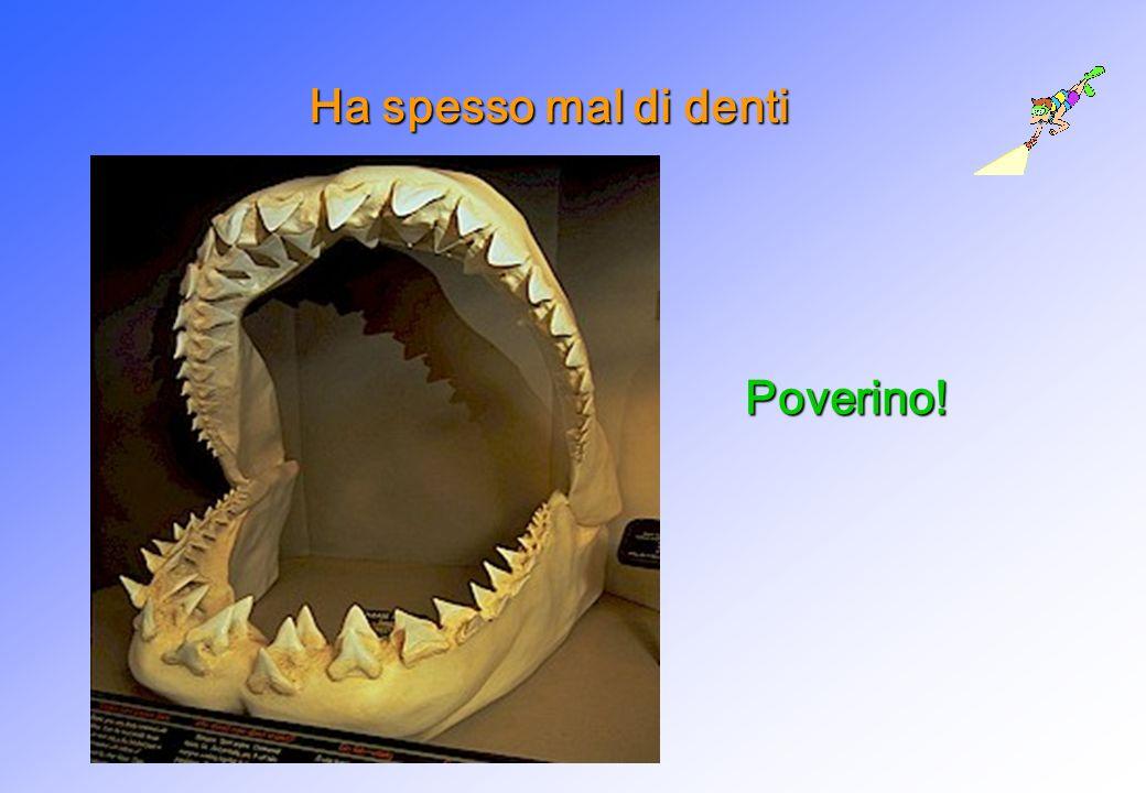 Ha spesso mal di denti Poverino!