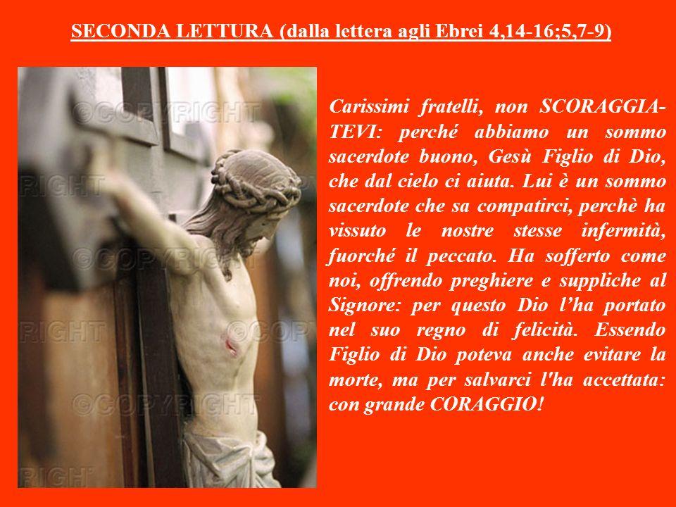 SECONDA LETTURA (dalla lettera agli Ebrei 4,14-16;5,7-9)