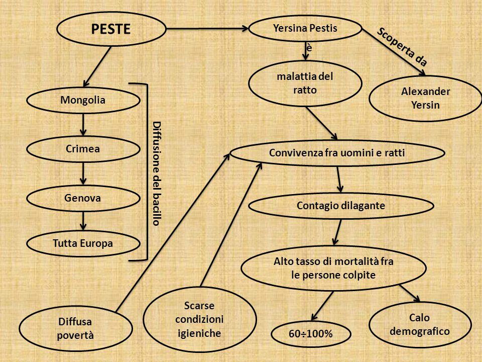 PESTE Scoperta da è Diffusione del bacillo Yersina Pestis