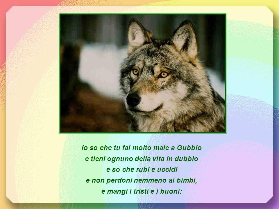 Io so che tu fai molto male a Gubbio e tieni ognuno della vita in dubbio e so che rubi e uccidi e non perdoni nemmeno ai bimbi, e mangi i tristi e i buoni: