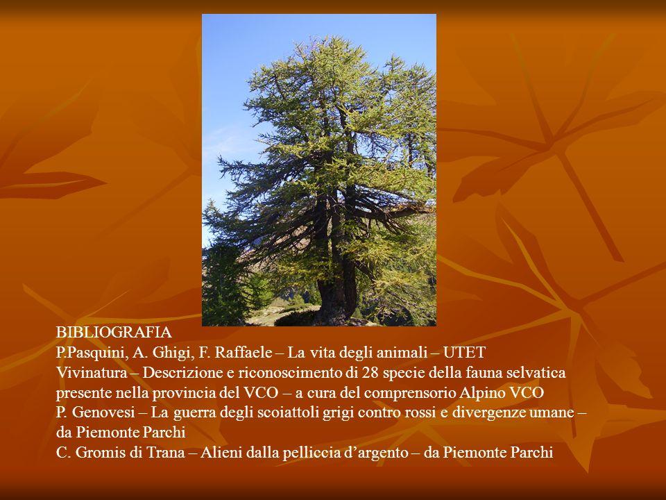 BIBLIOGRAFIA P.Pasquini, A. Ghigi, F. Raffaele – La vita degli animali – UTET.