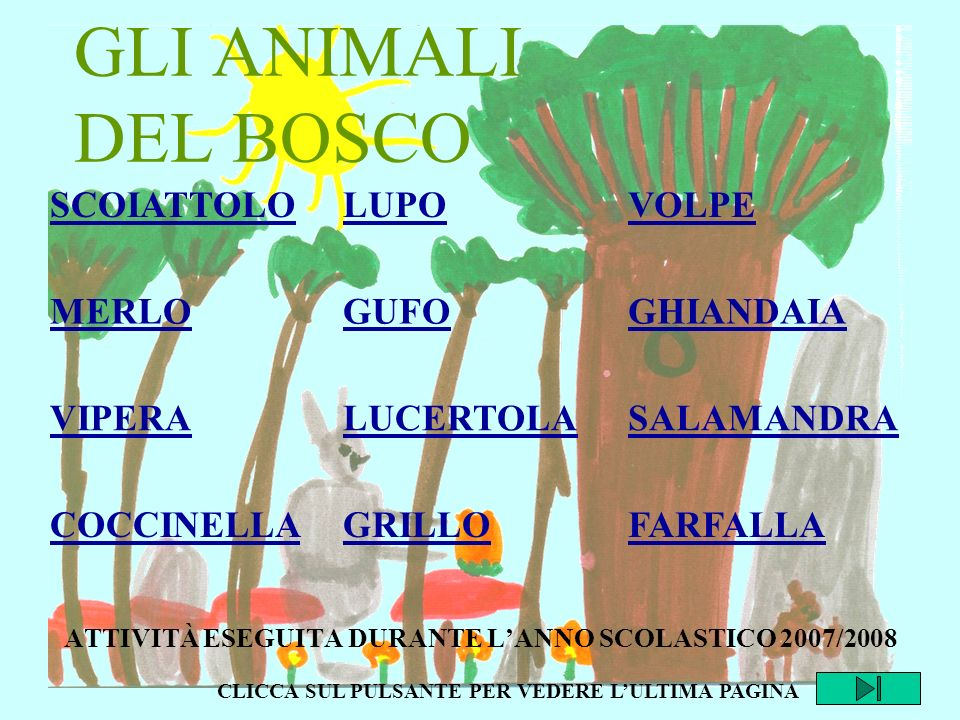 ATTIVITÀ ESEGUITA DURANTE L'ANNO SCOLASTICO 2007/2008