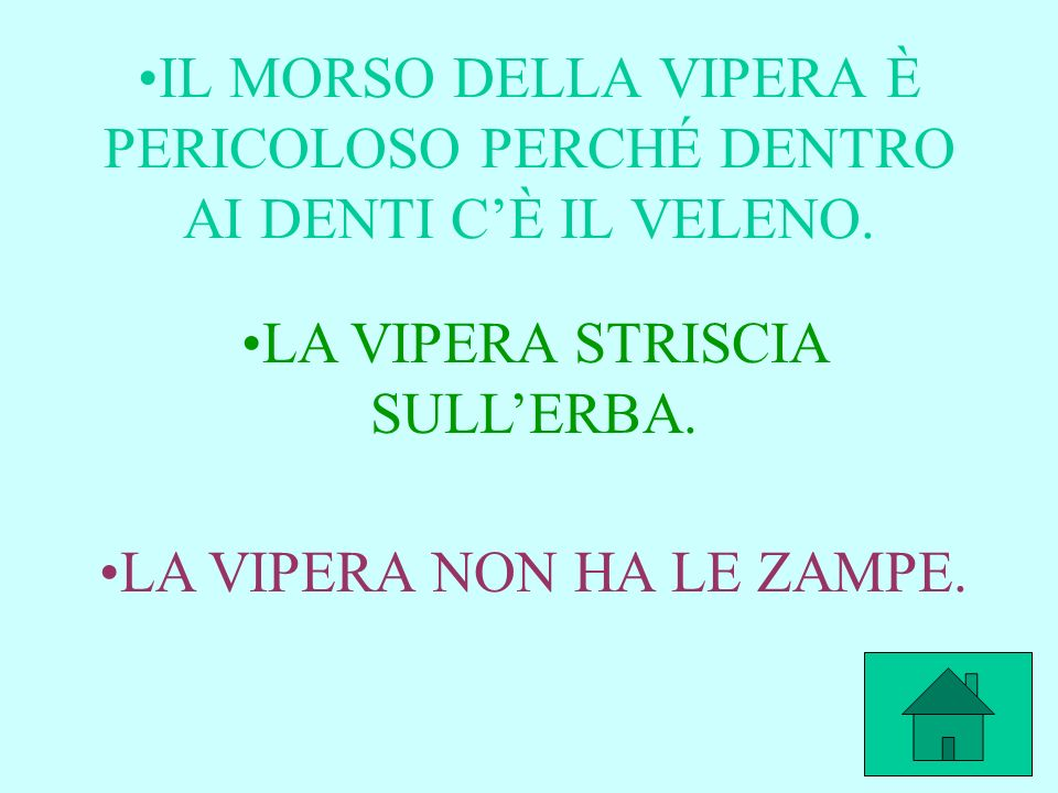LA VIPERA STRISCIA SULL'ERBA.