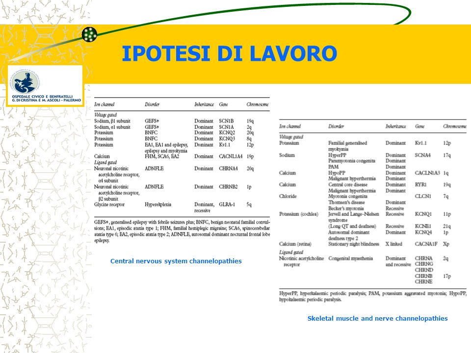 IPOTESI DI LAVORO Central nervous system channelopathies