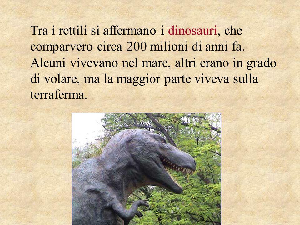 Tra i rettili si affermano i dinosauri, che comparvero circa 200 milioni di anni fa.