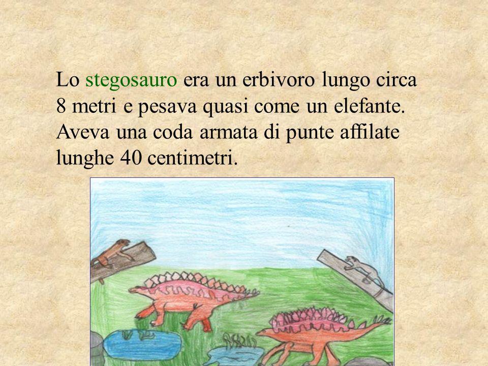 Lo stegosauro era un erbivoro lungo circa 8 metri e pesava quasi come un elefante.