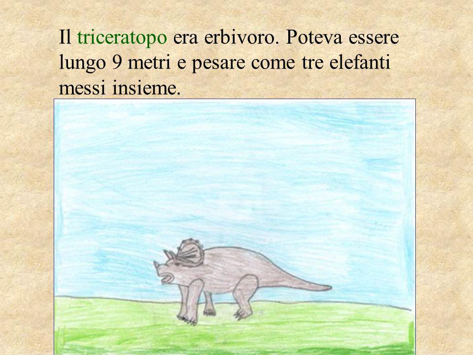 Il triceratopo era erbivoro