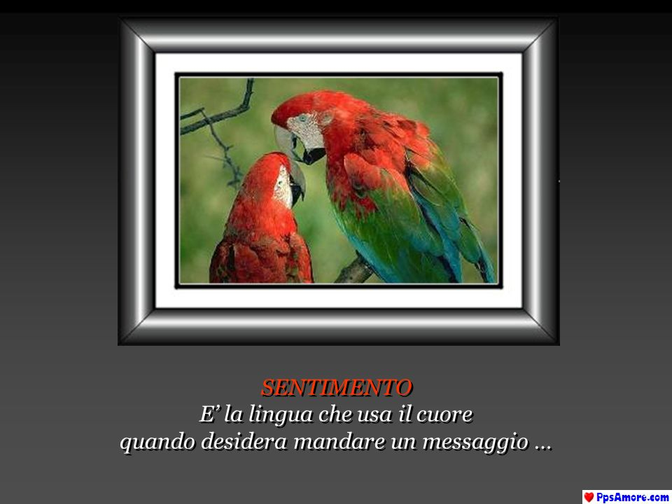 E' la lingua che usa il cuore quando desidera mandare un messaggio …