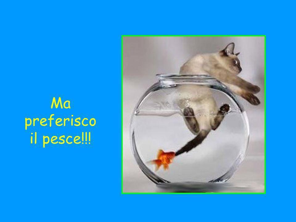 Ma preferisco il pesce!!!