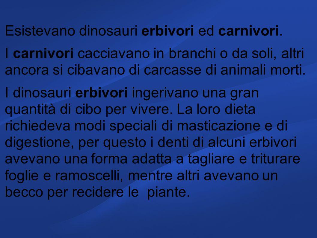 Esistevano dinosauri erbivori ed carnivori.