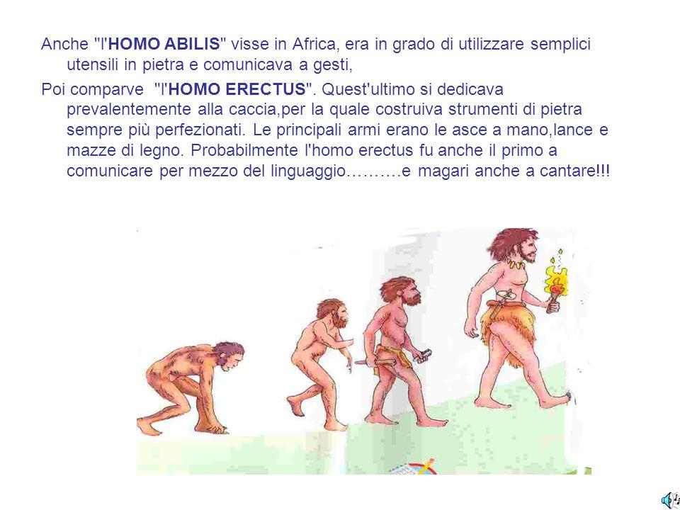 Anche l HOMO ABILIS visse in Africa, era in grado di utilizzare semplici utensili in pietra e comunicava a gesti,