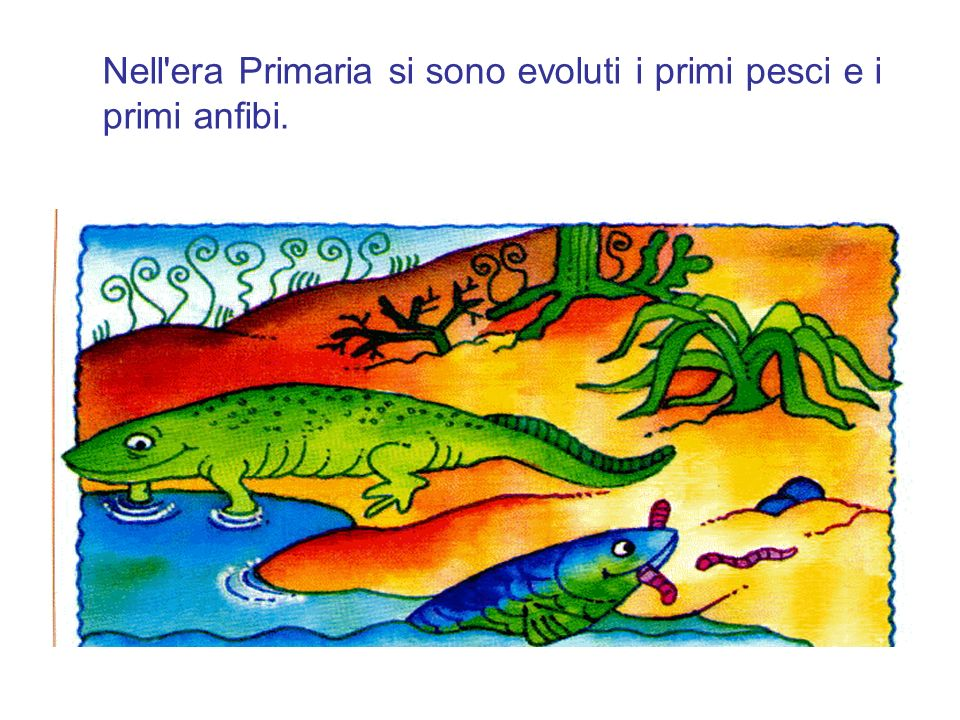 Nell era Primaria si sono evoluti i primi pesci e i primi anfibi.