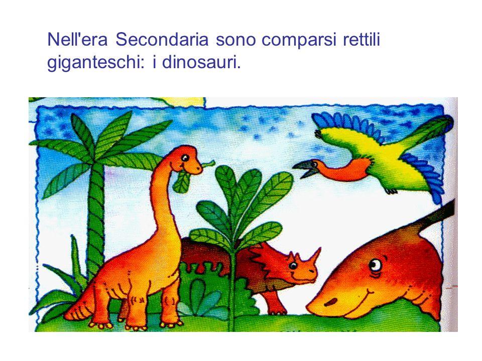 Nell era Secondaria sono comparsi rettili giganteschi: i dinosauri.