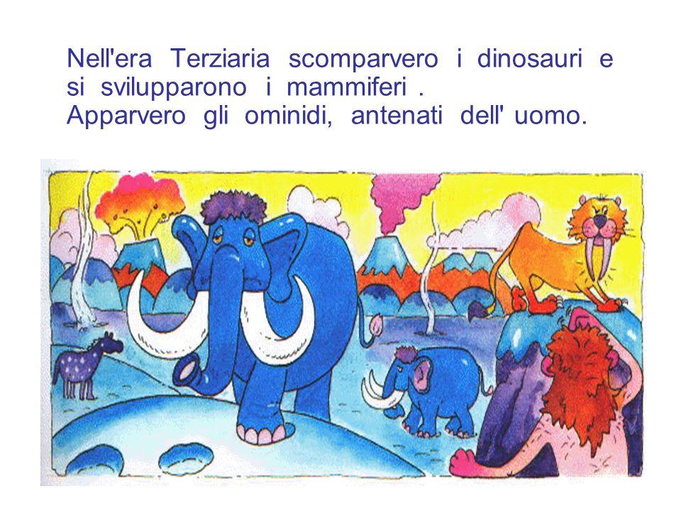 Nell era Terziaria scomparvero i dinosauri e si svilupparono i mammiferi .