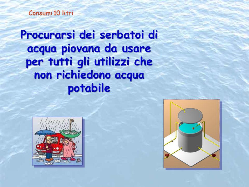Consumi 10 litri Procurarsi dei serbatoi di acqua piovana da usare per tutti gli utilizzi che non richiedono acqua potabile.