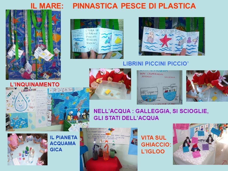 IL MARE: PINNASTICA PESCE DI PLASTICA LIBRINI PICCINI PICCIO'
