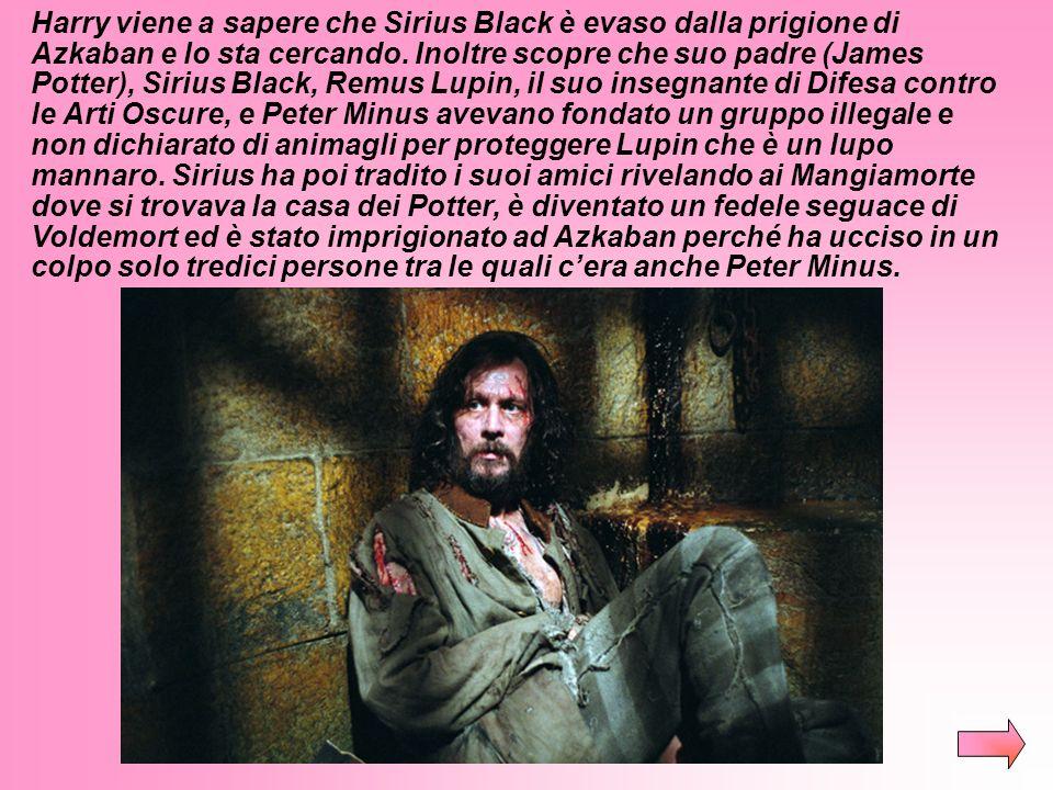 Harry viene a sapere che Sirius Black è evaso dalla prigione di Azkaban e lo sta cercando.