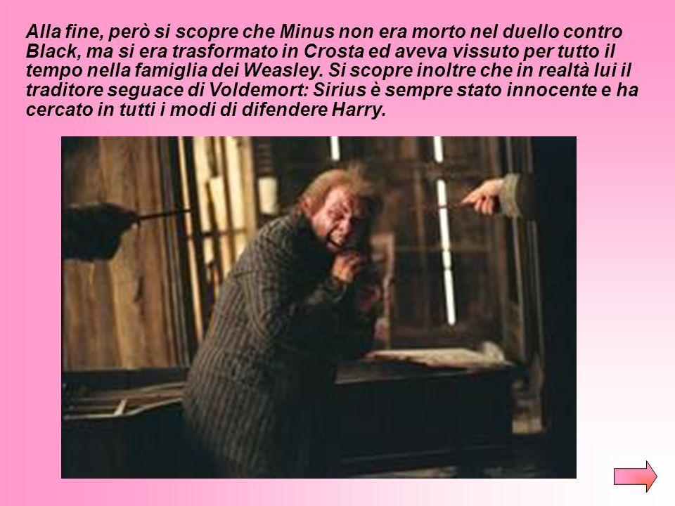 Alla fine, però si scopre che Minus non era morto nel duello contro Black, ma si era trasformato in Crosta ed aveva vissuto per tutto il tempo nella famiglia dei Weasley.