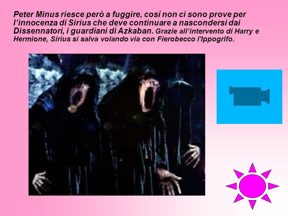 Peter Minus riesce però a fuggire, così non ci sono prove per l'innocenza di Sirius che deve continuare a nascondersi dai Dissennatori, i guardiani di Azkaban.