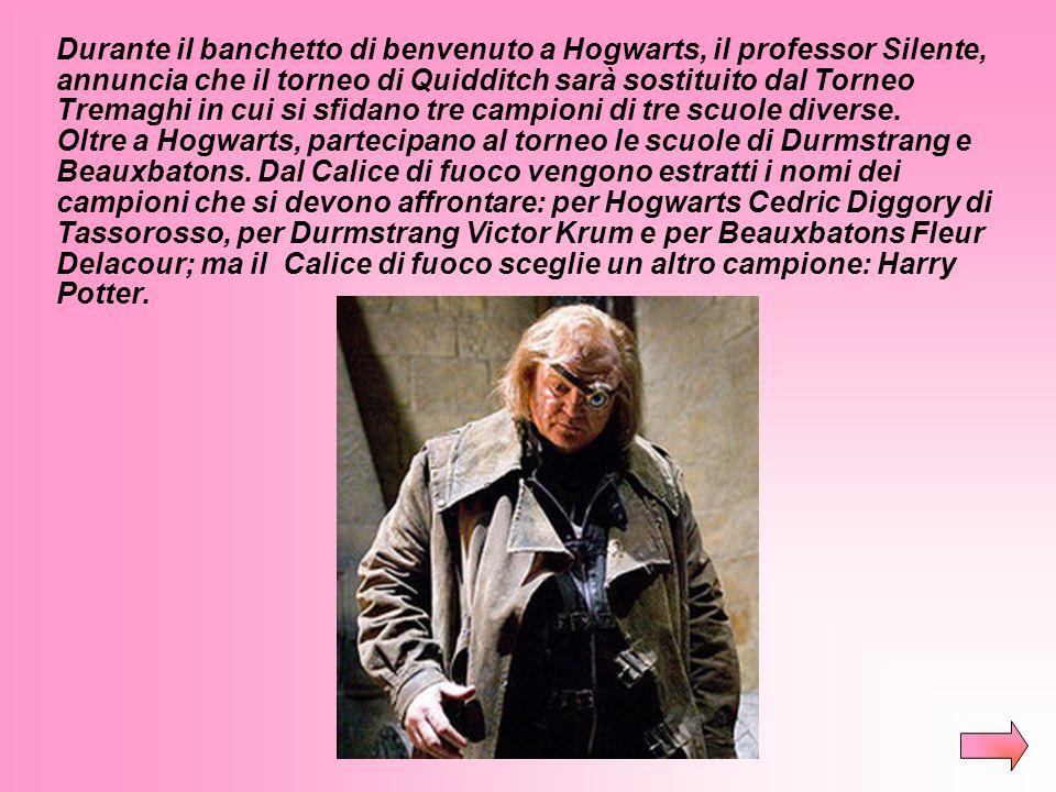 Durante il banchetto di benvenuto a Hogwarts, il professor Silente, annuncia che il torneo di Quidditch sarà sostituito dal Torneo Tremaghi in cui si sfidano tre campioni di tre scuole diverse.