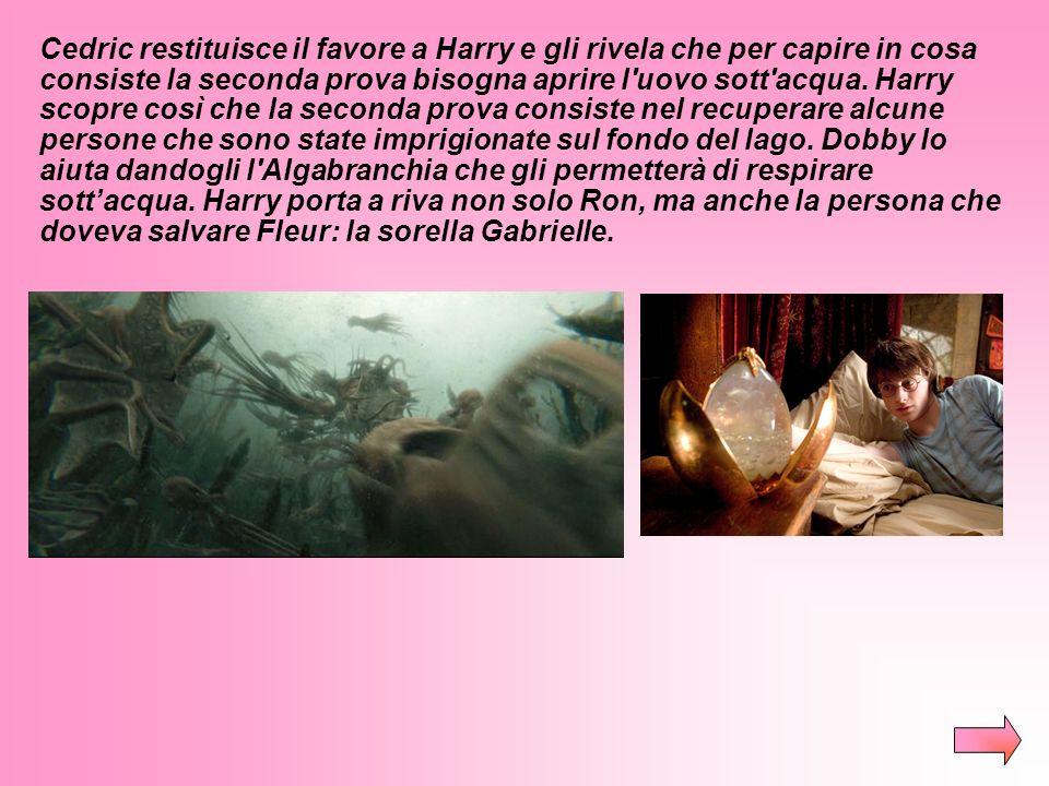 Cedric restituisce il favore a Harry e gli rivela che per capire in cosa consiste la seconda prova bisogna aprire l uovo sott acqua.