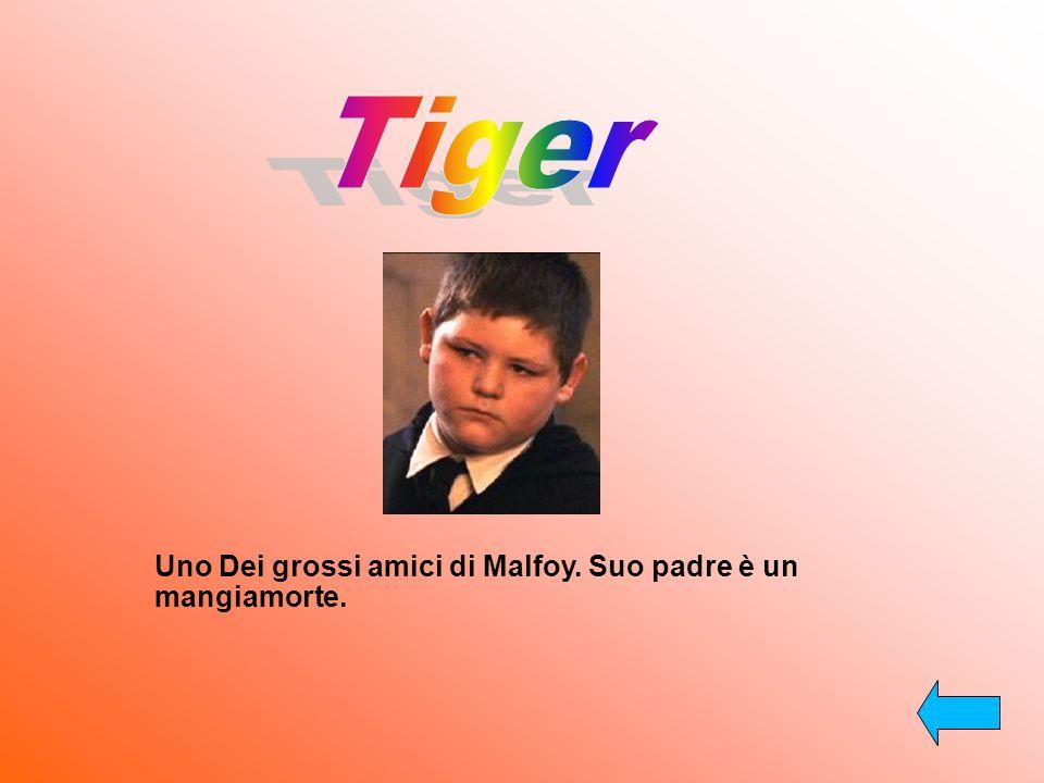Tiger Uno Dei grossi amici di Malfoy. Suo padre è un mangiamorte.