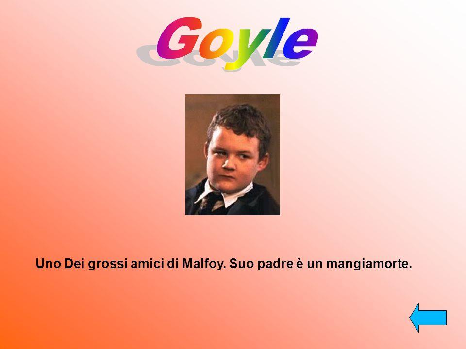 Goyle Uno Dei grossi amici di Malfoy. Suo padre è un mangiamorte.