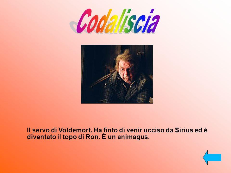 Codaliscia Il servo di Voldemort. Ha finto di venir ucciso da Sirius ed è diventato il topo di Ron.
