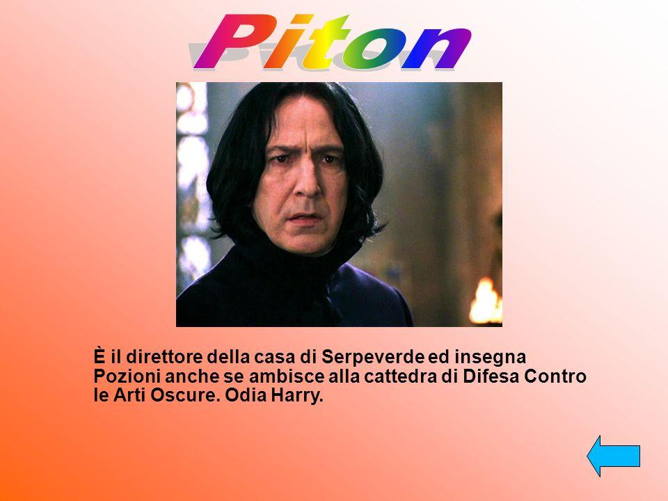 Piton È il direttore della casa di Serpeverde ed insegna Pozioni anche se ambisce alla cattedra di Difesa Contro le Arti Oscure.