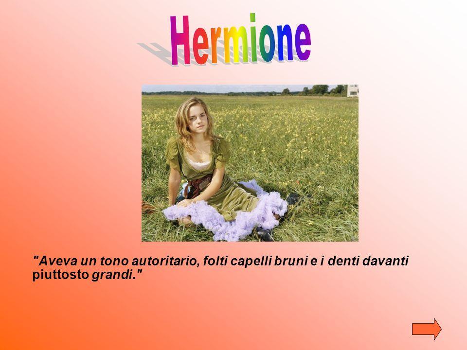 Hermione Aveva un tono autoritario, folti capelli bruni e i denti davanti piuttosto grandi.