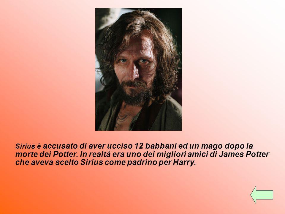 Sirius è accusato di aver ucciso 12 babbani ed un mago dopo la morte dei Potter.