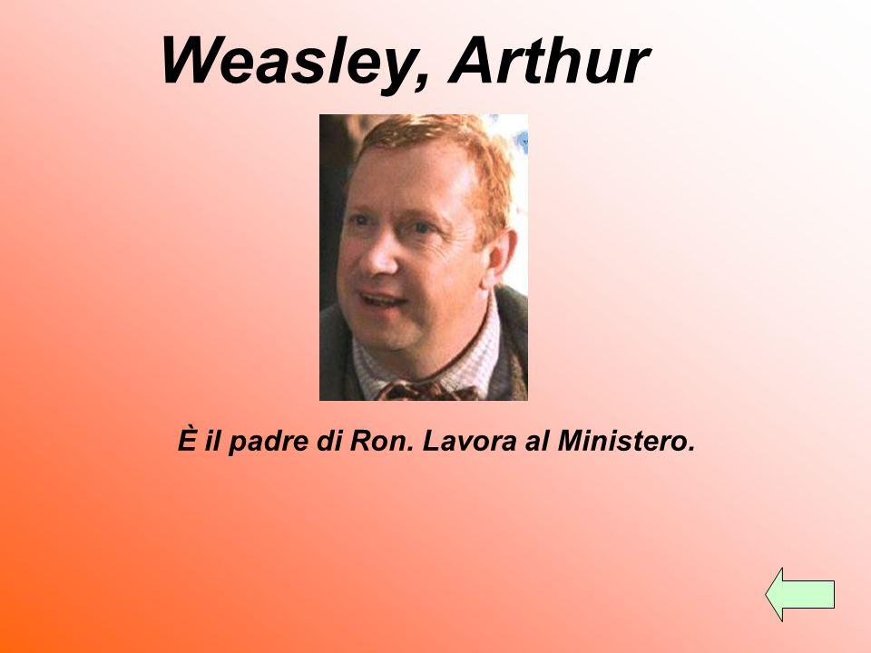 Weasley, Arthur È il padre di Ron. Lavora al Ministero.