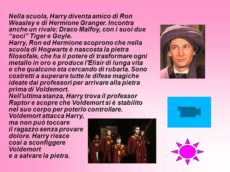 Nella scuola, Harry diventa amico di Ron Weasley e di Hermione Granger