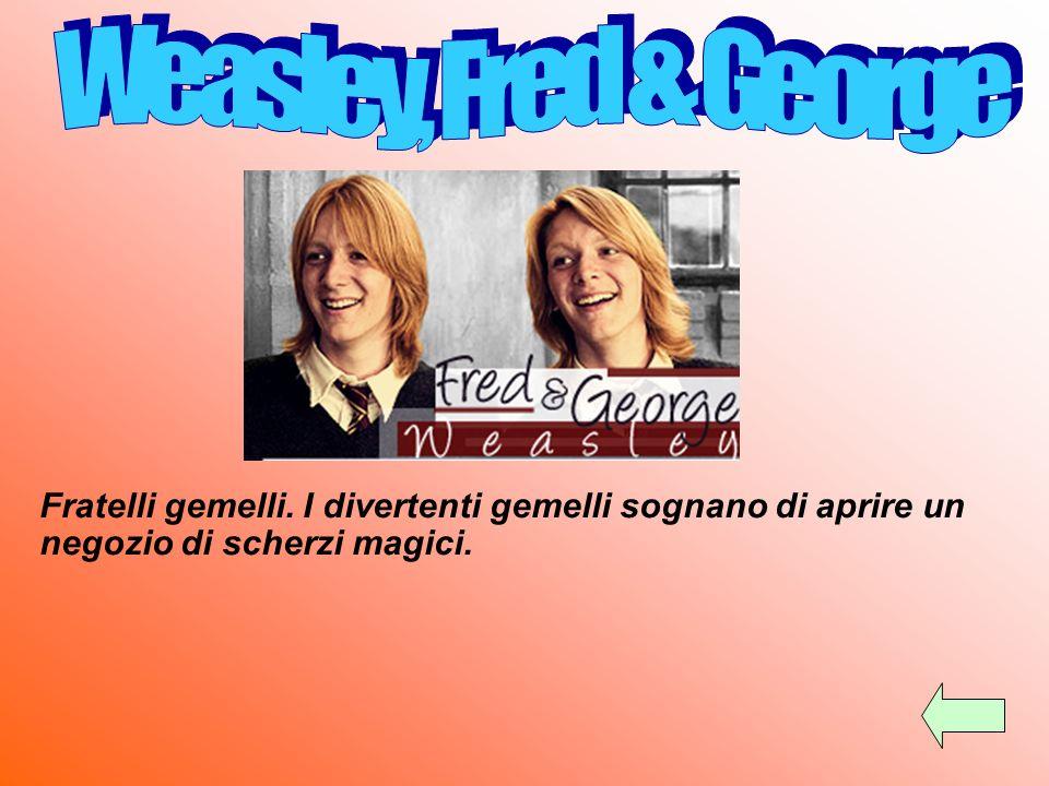 Weasley, Fred & George Fratelli gemelli.