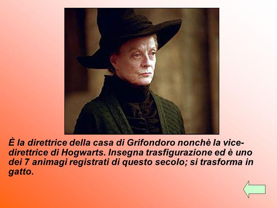 È la direttrice della casa di Grifondoro nonchè la vice-direttrice di Hogwarts.